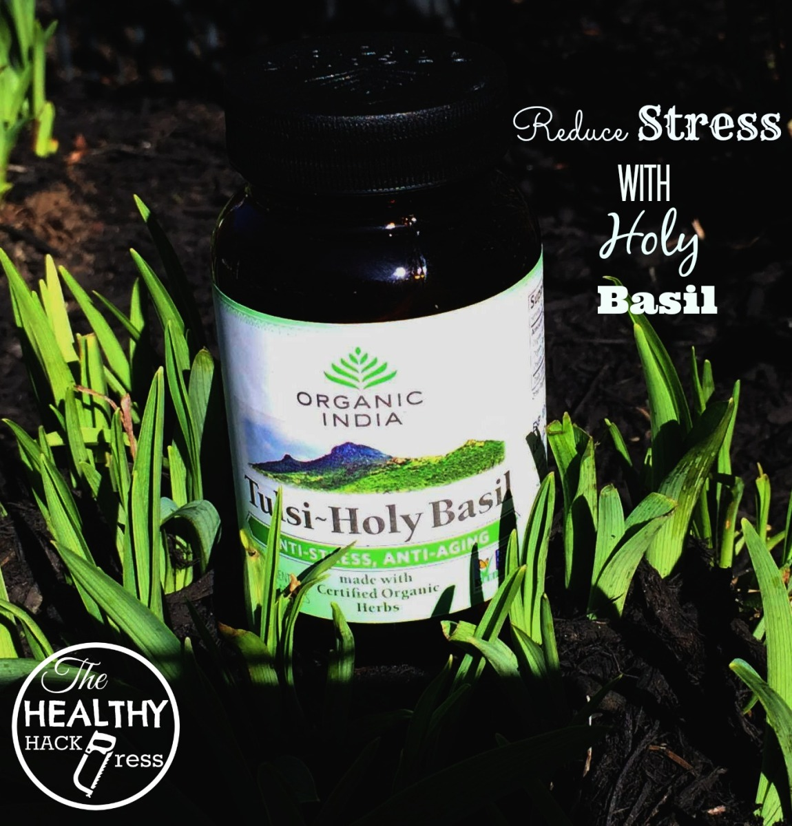 Reduce Stress with Holy Basil